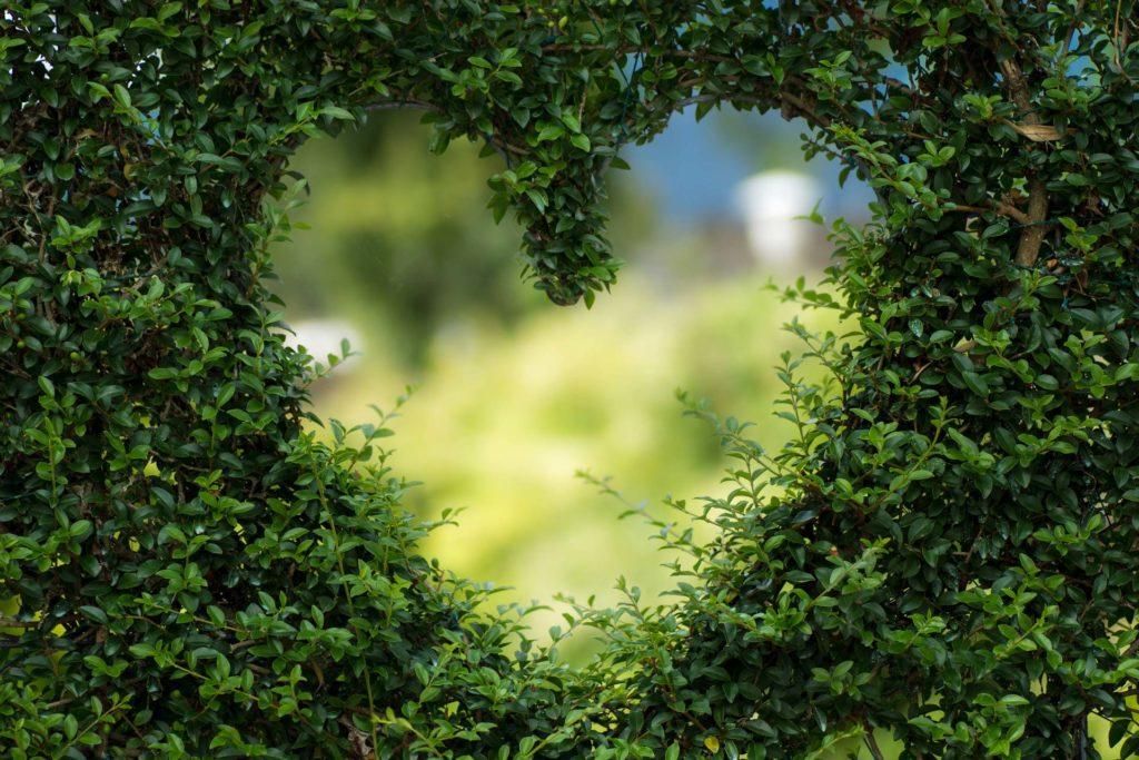 Garten Herz